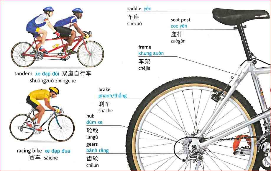 Tiếng Trung chủ đề xe đạp