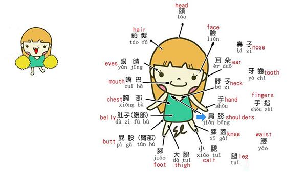 Học tiếng Trung cơ bản với những mẫu câu giao tiếp thông dụng